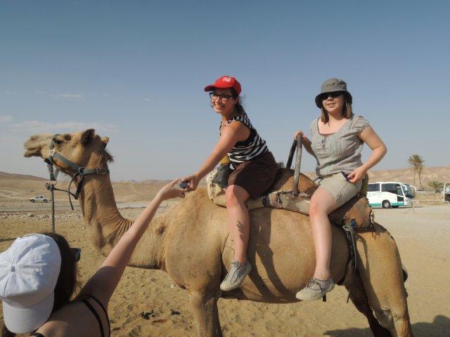Kamelausritt